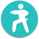 Kung fu icon