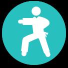 Kung fu icon
